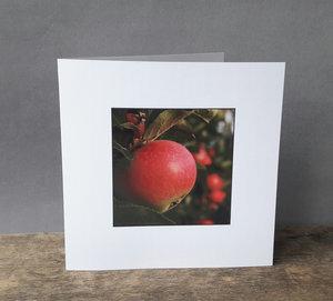 Fotokort, kvadratiskt dubbelt med kuvert